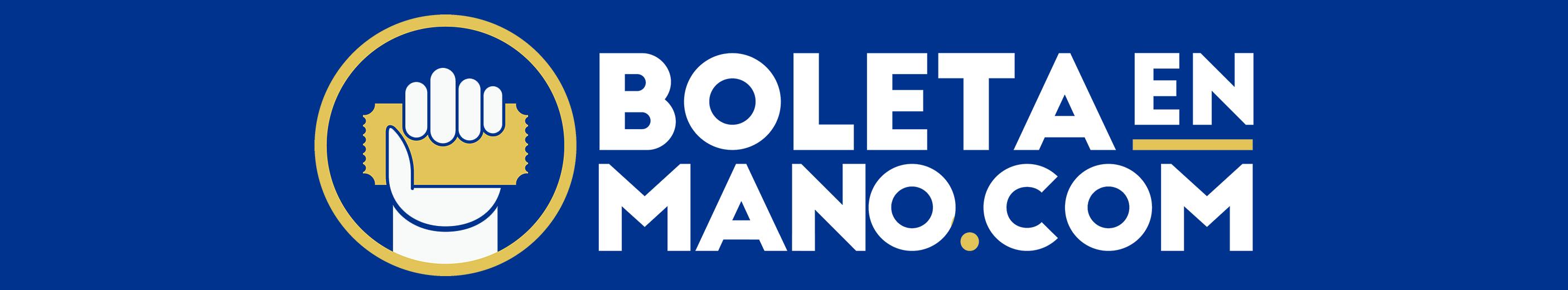 Sitio web Boleta en Mano